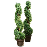 Artificial Topiary Plant hire